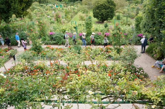 monet garden giverny 17