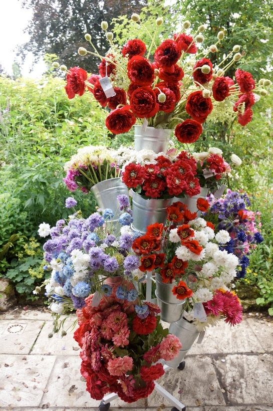 monet garden giverny 19