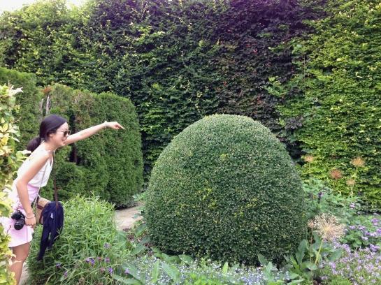 monet garden giverny 44