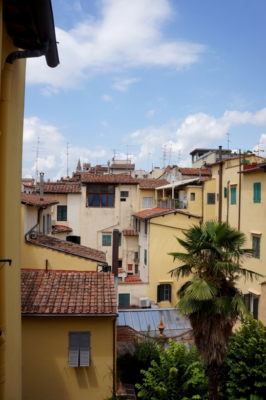 view_from_house_florence_firenze