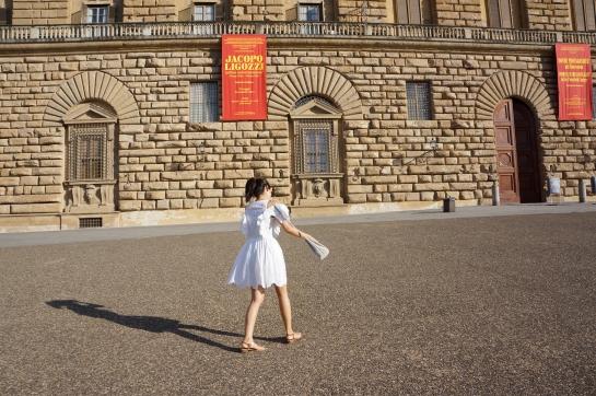 palazzo_palace_pitti_florence_firenze0