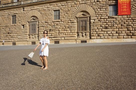 palazzo_palace_pitti_florence_firenze15