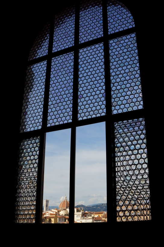 window_view_palazzo_palace_pitti_florence_firenze13
