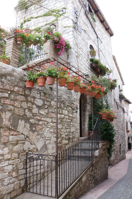assisi_flower_house_34
