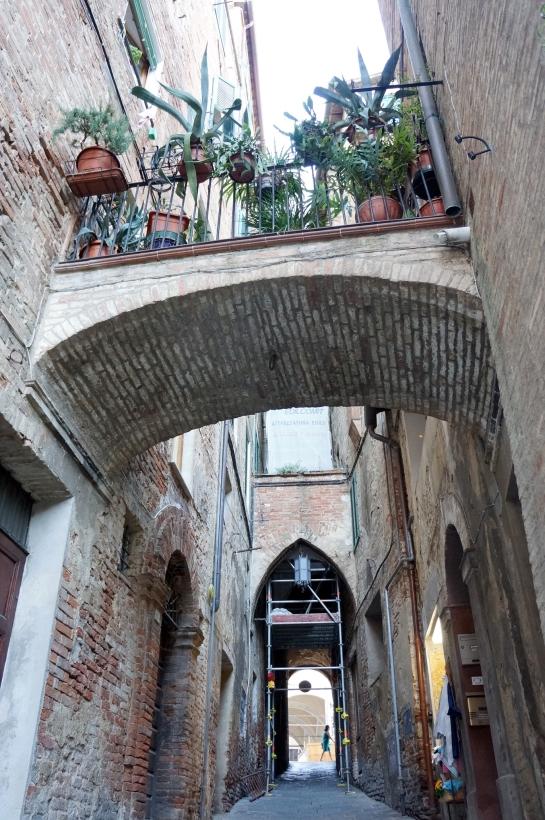 35_street_siena_italy