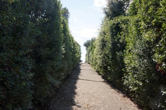 boboli_garden_palazzo_pitti_florence_firence_22