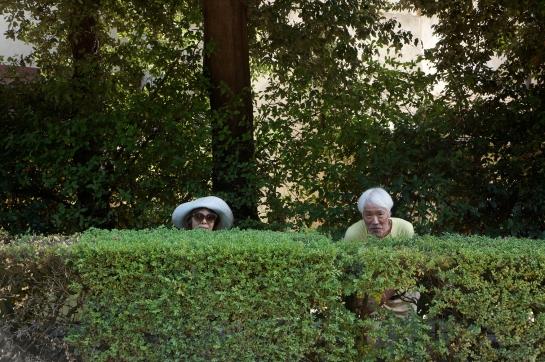 boboli_garden_palazzo_pitti_florence_firence_31