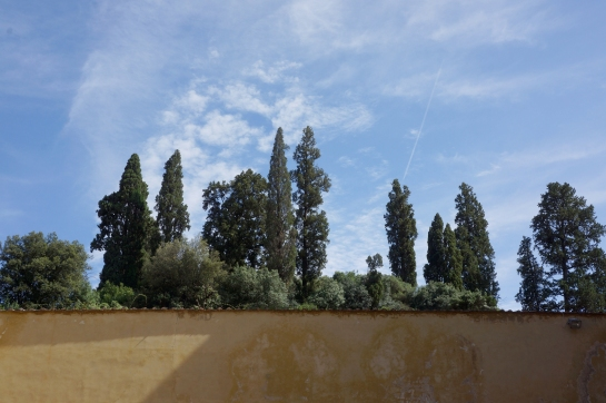 boboli_garden_palazzo_pitti_florence_firence_32